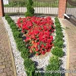 Ogrody Szczecin, Stargard - Usługi ogrodnicze